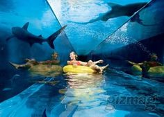 Atlantis Hotel. One of the most luxurious hotels in Dubai. #hotelinteriordesigns