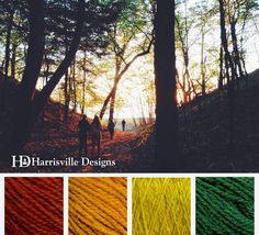 'First Hike of Fall' color palette featuring our Shetland yarn in Topaz, Gold, Goldenrod, and Spruce.