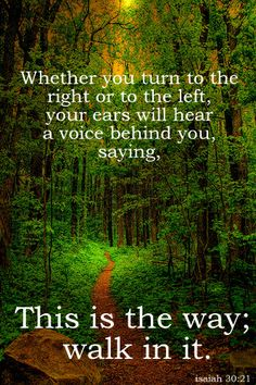 """Isaiah 30:21 And your own ears will hear a word behind you saying, """"This is the way. Walk in it,"""" in case you should go to the right or in case you should go to the left - - Psalm 119:105 Lord, Your word is a lamp to my feet and a light to my path."""