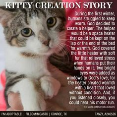 =^,,^= God created Cats and Dogs to help Man survive, and teach them skills they need to learn.