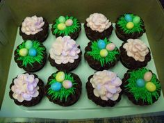 Made these cupcakes for Easter.  Choc cupcakes with BC and candy eggs.  TFL