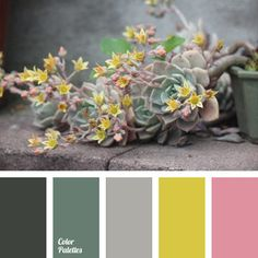 Soft pink and greenish-yellow colour will competently and organically combine with each other if in addition to them you will use shades of gray-green and.