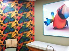 Parrot exam room