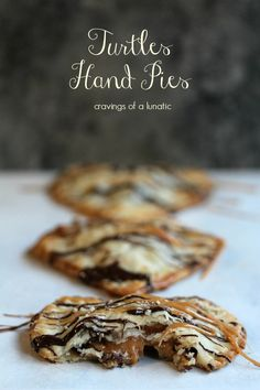 Turtle Hand Pies - look surprisingly easy!  Refrigerated dough, caramels, chocolate chips/wafers, pecan halves.