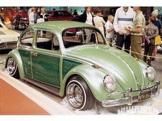 Green lowrider Beetle