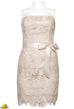 Adrianna Papell  Strapless Lace Sheath Champagne Dress with Bow Belt ♡.♡.♡
