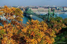 Budapest Bug Capital Of Hungary, Budapest Hungary, River, Landscape, Architecture, World, City, Outdoor, Autumn