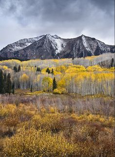 Crested Butte, Colorado in the fall