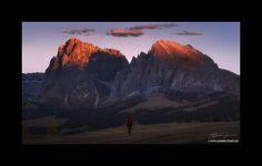 Clicca sull'immagine per ingrandirla! Sassolungo e Sassopiatto visti al tramonto dalla parte dell'Alpe di Siusi. Come raggiungere questo posto: vedi indicazioni scritte in questo artico…