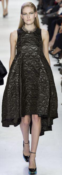 Christian Dior Ready To Wear Autumn 2014  Zapytaj nas jakie pikówki możemy wyczarować:)!