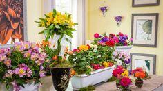 Shirley's DIY Home Flower Cutting Garden!