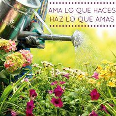 verteverde.com  #amor #amarloquehacemos