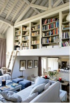 Great library idea for a smaller living space. Cannot get over the ladder - really nice touch.