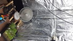 The materials you need. I took roof brandering to build the framework. Then I used standard painters dropsheet (100 micron).  Growers recommend mylar as the reflective backing but I found this too expensive, I have used foiled lined dog food bags. for the flood tray a geyser tray is perfect in the grow room. In the fruiting room I use 33L black storage containers