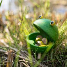 Béka etető - Feed A Frog - PlanToys. Osszuk két csapatnak a bogarakat, a csapatok egymás után megetetik az éhes békát úgy hogy a szájába dobják a bogarat, az a csapat győz, akinek a legtöbbet sikerült bedobni a béka szájába. #plantoys #yogoplay #plantoyshungary #FeedAFrog