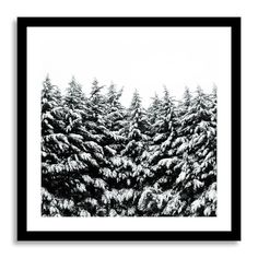 Minted for west elm - Winter Black and White