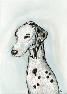 A Little Peaceful  Dalmation Art dog Print by AlmostAnAngel66, £15.00