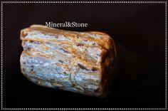 Anatolia Petrified Wood Agate Natural Rough 160 Gram / TURKEY #MineralStone