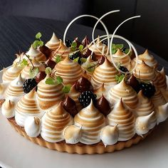 Look at this creative take on a classic meringue pie, or pavlova. The added fruit topping and pipped dollops of chocolate just makes this dessert stand out! Fancy Desserts, Gourmet Desserts, No Bake Desserts, Just Desserts, Delicious Desserts, Dessert Recipes, Gourmet Foods, Plated Desserts, Cake Recipes