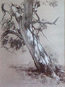 Dappled Light by John McCartin, Charcoal ~ 30cm x 41cm