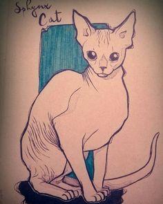 Sphynx Cat by Begominola.deviantart.com on @DeviantArt