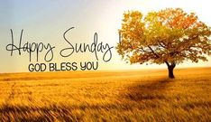 101 Inspirational Blessed Sunday Quotes, Sayings and Images - Sunday Blessings - Sunday Plans Blessed Sunday Messages, Blessed Sunday Morning, Sunday Wishes, Good Morning God Quotes, Sunday Greetings, Have A Blessed Sunday, Happy Sunday Quotes, Thursday Quotes, Blessed Quotes