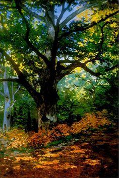 """Bodmer Oak, Fontainebleau Forest"" Wall Art by Claude Monet - Beautiful!"