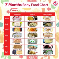 By 7 months, babies are ready to try new textures & flavors. Introduce these foo… By 7 months, babies are ready to try new textures & flavors. Introduce these foods the right way with our weekly food charts custom made for 7 month old babies. Baby Food Guide, Baby Food Recipes Stage 1, Baby Food Schedule, Food Baby, 7 Month Old Schedule, Baby Feeding Schedule, 7 Month Old Baby Food, 7 Months Baby Food, Baby Month By Month