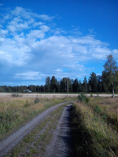 Finnish Countryside, Mäntsälä.