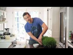 Top 6 Wheatgrass Tips! - WTF! S4 Ep 1