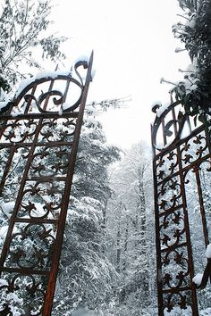Narnia in winter? Triquetra, Chronicles Of Narnia, Iron Work, Iron Gates, Winter Beauty, Snow Queen, Ice Queen, Garden Gates, Winter Garden