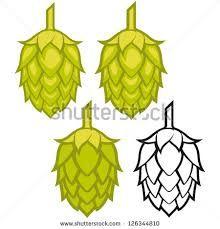 Image result for Beer Hops