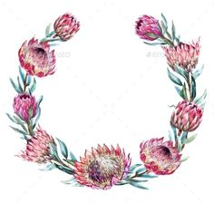 Buy Watercolor Tropical Protea Wreath by Zenina on GraphicRiver. Beautiful vector image with nice watercolor tropical protea wreath Flor Protea, Protea Art, Protea Flower, Australian Flowers, Wreath Drawing, Wreath Watercolor, Watercolour Flowers, Creative Flyers, Decoupage Vintage