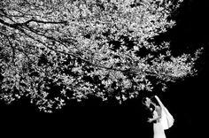 美得讓人屏息的婚紗攝影 – Ben Chrisman | ㄇㄞˋ點子靈感創意誌