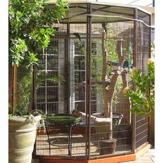 Amazing Bird Cage Ideas for Your Home Decoration. Amazing Bird Cage Ideas for Your Home Decoration. For my friends who still have the rest of the land, especially those who live in the countryside, th. Pet Bird Cage, Bird Cages, Budgie Cages, Stainless Steel Bird Cage, Hanging Bird Feeders, Bird House Kits, Bird Aviary, Diy Chicken Coop, Budgies