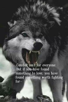 """The wolf. """"Combat isn't for everyone. Wise Quotes, Quotable Quotes, Great Quotes, Inspirational Quotes, Qoutes, Lone Wolf Quotes, Wolf Love, Wolf Spirit, Spirit Animal"""