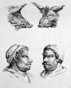 03-charles-le-brun-physiognomy-humans-evolved
