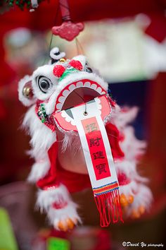 Chinese New Year Lion Dancing