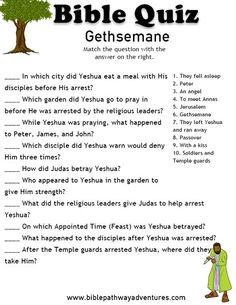 Enjoy our free Bible Quiz: Gethsemane. Fun for kids to print and test their knowledge of Yeshua and the Passover. Kids Church Lessons, Youth Lessons, Sunday School Lessons, Bible Study For Kids, Bible Lessons For Kids, Kids Bible, Bible Quiz, Bible Trivia, Bible Games