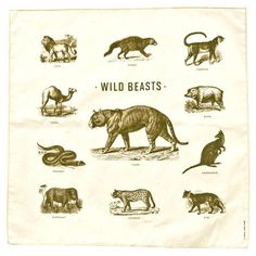 Izola | Wild Beasts Handkerchief $16