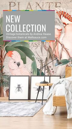 Update your decor with this stylish jungle wallpaper by Andrea Haase. Nursery Wallpaper, Animal Wallpaper, Designer Wallpaper, Home Decor Inspiration, Wall Murals, Botanical Decor, Botanical Wallpaper, Pink, Street Art