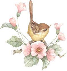 Album Archive - Flights of Fancy Acrylic Painting Flowers, Abstract Flowers, Watercolor Bird, Watercolor Paintings, Bird Artwork, Vintage Birds, Botanical Illustration, Beautiful Birds, All Art