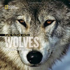 Face to Face with Wolves (Face to Face with Animals) by Jim Brandenburg,http://www.amazon.com/dp/1426306989/ref=cm_sw_r_pi_dp_p2xjsb04WCJJRGST
