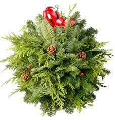 Have you ever seen a Christmas kissing ball? These decorated balls of evergreens, holly and herbs hang over doorways during the Christma. Indoor Christmas Decorations, Christmas Greenery, Outdoor Christmas, Christmas Wreaths, Christmas Ornaments, House Decorations, Christmas Items, Christmas Projects, Christmas Holidays