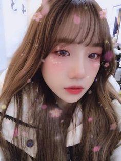 Yuri, Forever Girl, Cute Hamsters, Wattpad, Japanese Girl Group, Pretty And Cute, Female Singers, The Wiz, Korean Girl Groups