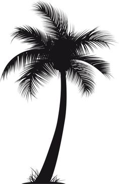 Vectores libres de derechos: Palm Tree