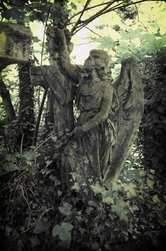 Misty Circles - mortisia: Abney Park Cemetery, London by OkeMani Cemetery Angels, Cemetery Statues, Cemetery Art, Angel Statues, Angel Sculpture, Art Sculpture, Gardens Of Stone, Dark Castle, Old Cemeteries