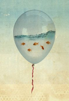 Reality and Dreams Collide goldfish inside a balloon