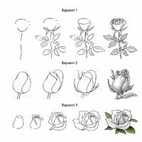 ideas for drawing rose doodle Flower Drawing Tutorials, Flower Sketches, Art Tutorials, Rose Sketch, Flower Drawings, Roses Drawing Tutorial, Pencil Art Drawings, Easy Drawings, Drawing Sketches