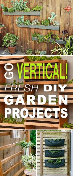 Fresh DIY Vertical Garden Projects Go Vertical Fresh DIY Garden Projects Vertical DIY gardens for small spaces Cool new ideas projects and tutorials Jardin Vertical Diy, Vertical Garden Diy, Vertical Gardens, Vertical Bar, Small Gardens, Small Space Gardening, Garden Spaces, Organic Gardening, Gardening Tips